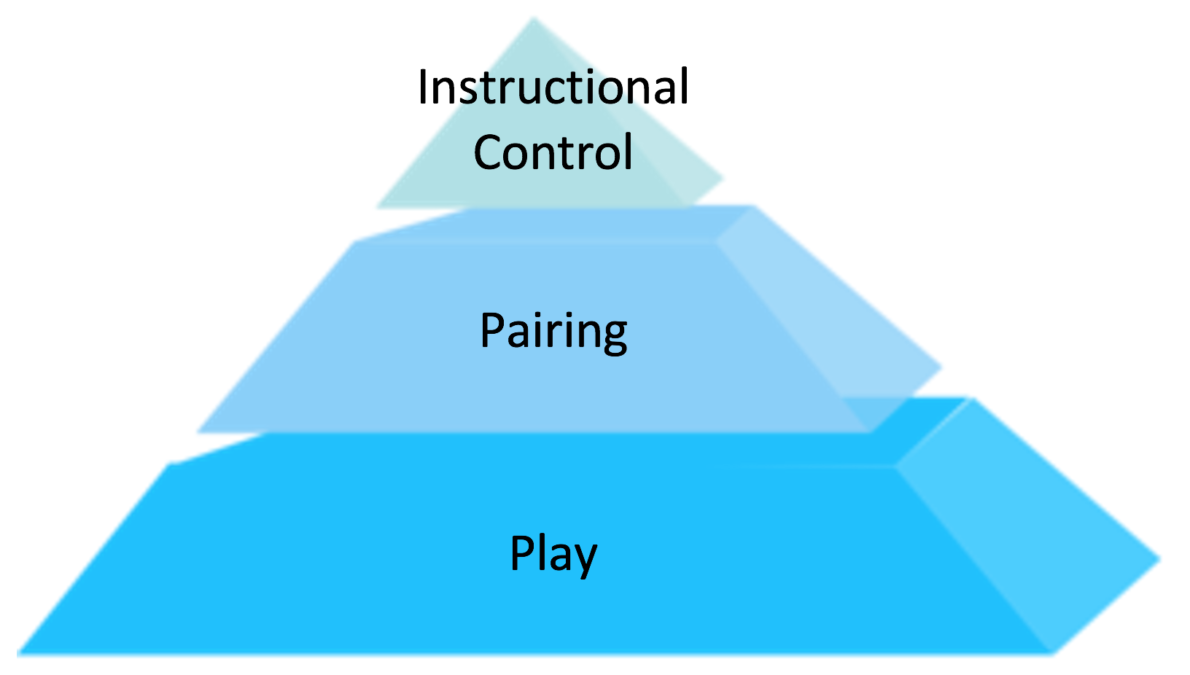 Play and Pairing